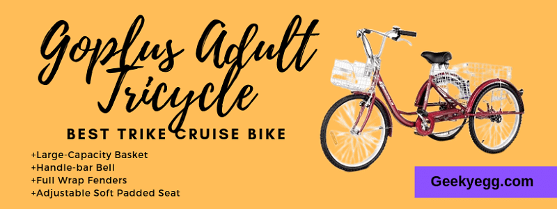 Best Trike Cruise Bike 2020