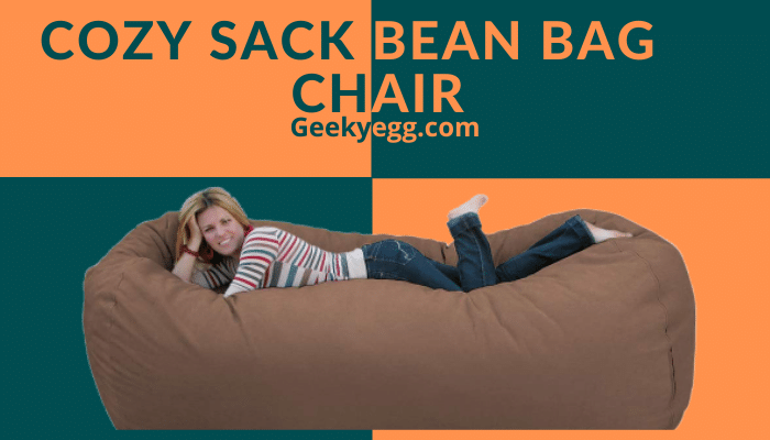 Cozy Sack Bean Bag Chair
