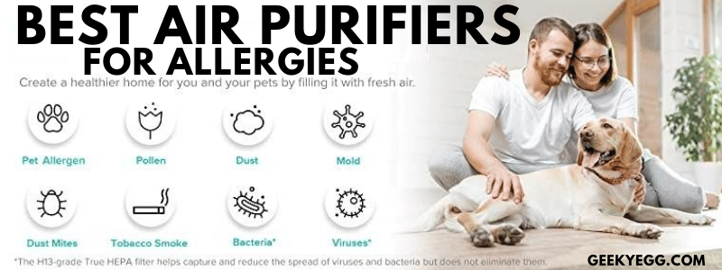 Top 10 Best Air Purifiers for Allergies 2021 - Reviews & Buyer's Guide
