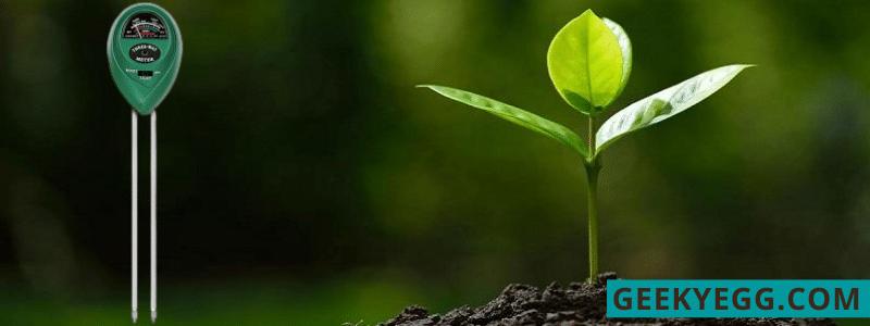 Emoly Soil pH Meter