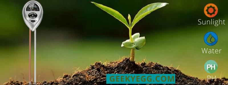 Kigoumi Soil pH Meter